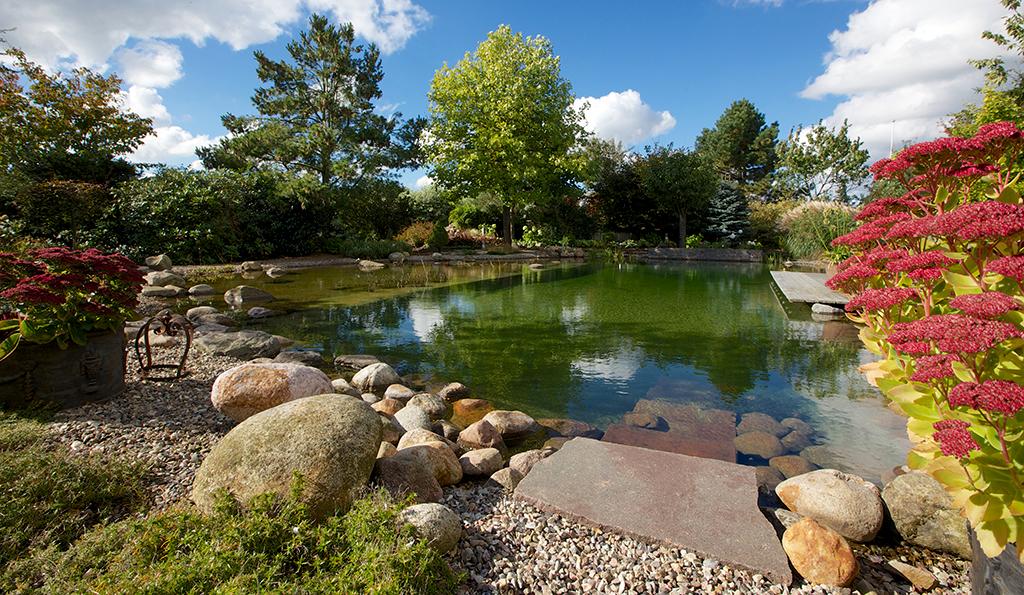 schwimm- & teichanlagen - bech gartenbaubetriebe - Gartengestaltung Mit Steinen Und Blumen