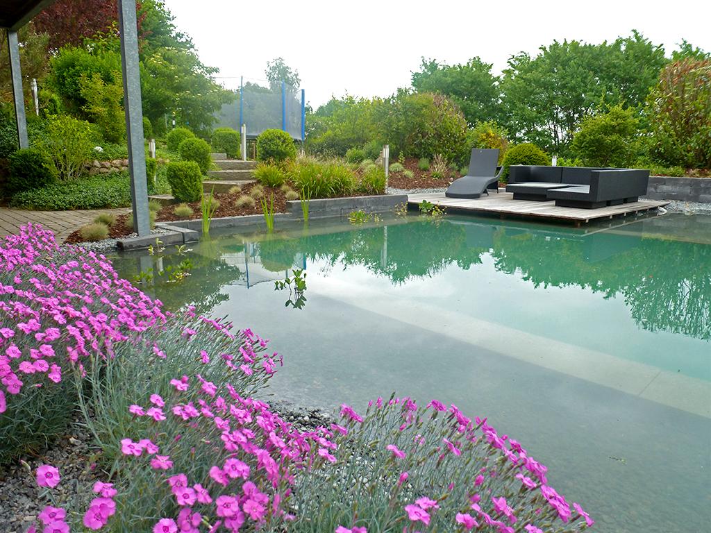 Gartenbau Eckernförde schwimm teichanlagen bech gartenbaubetriebe